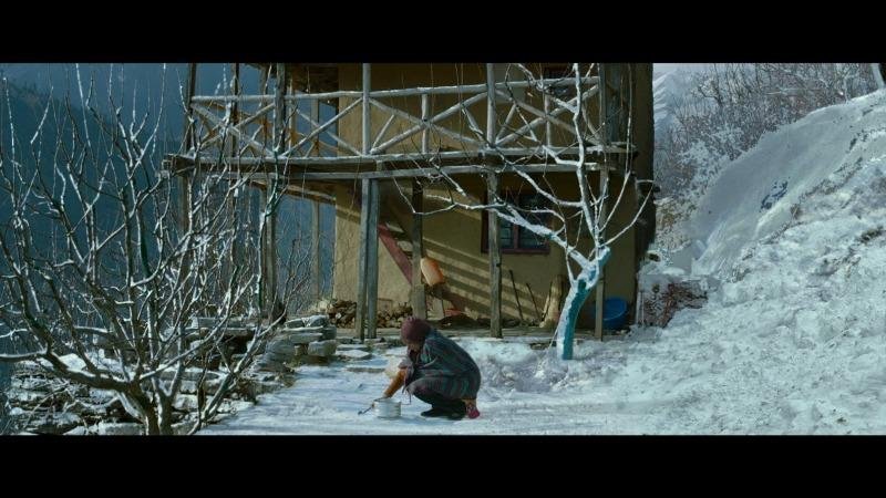 ഷാങ്ഹായി അന്താരാഷ്ട്ര ചലച്ചിത്രമേളയിൽ  'വെയില്മരങ്ങള്'